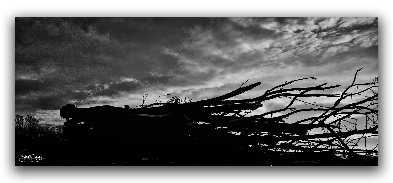 Oberreichenbach woodcart silhouette