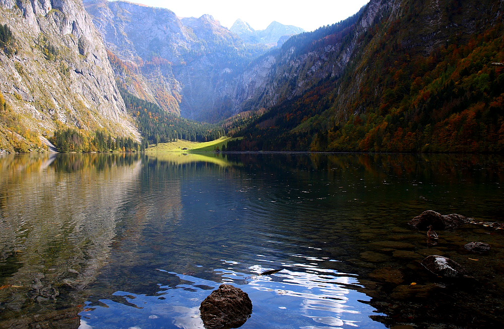 Obersee im Herbst