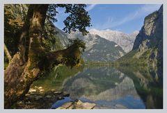 Obersee mit Watzmann Ostwand