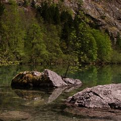 Obersee V