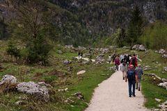 Obersee XVI - Völkerwanderung
