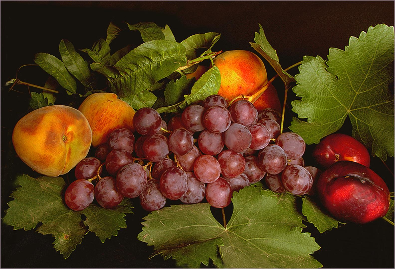 Obst aus dem Herbst  Argentiniens