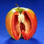 Obst & Gemüse in einem