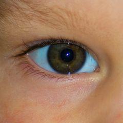 Occhio 3