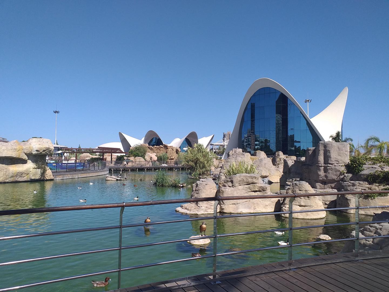 Oceanogràfic, Hemisfèric, Palau de les Arts, Valencia