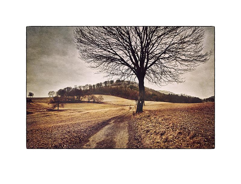 Odenwald # 04