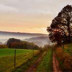 Odenwald - Morgen