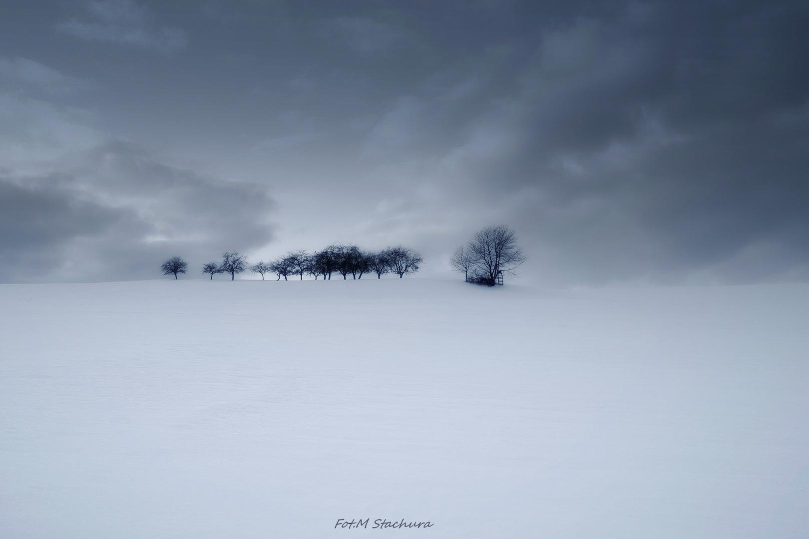 Odenwald versinkt im Schnee