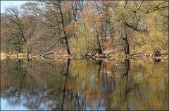Oderwiesen