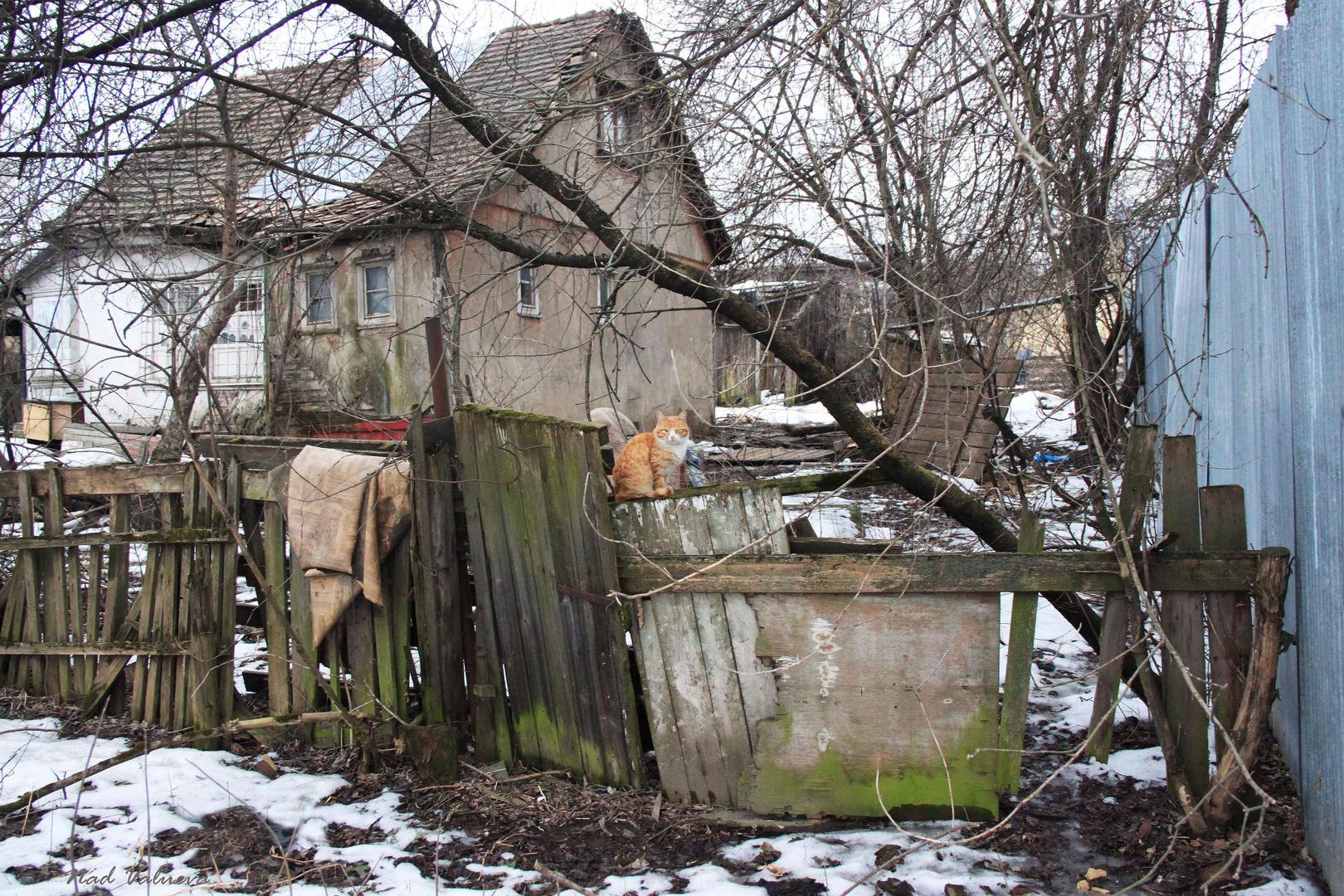 Odintsovo Yaskino Straße