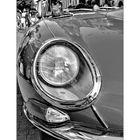Oeil de jaguar