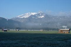 Oeschwiesen und Morgennebel