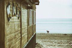 off season, alternative frameworks on the beach V**