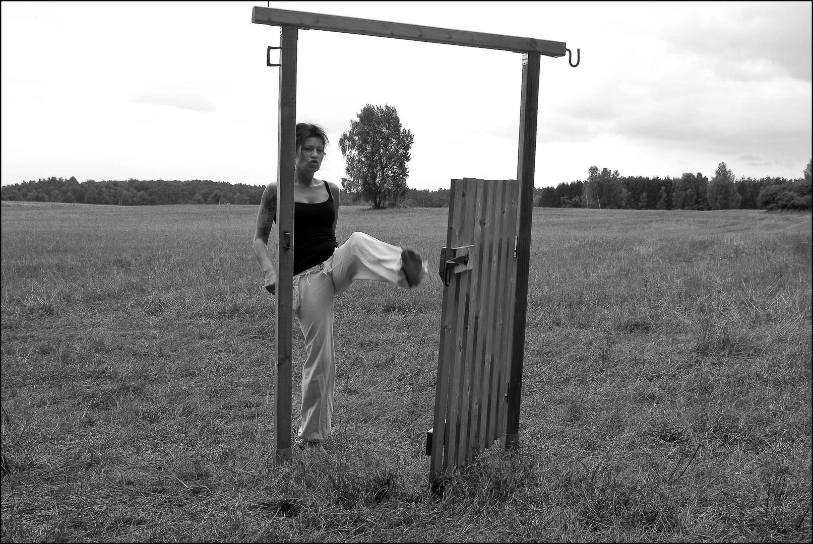 offene Tür 3