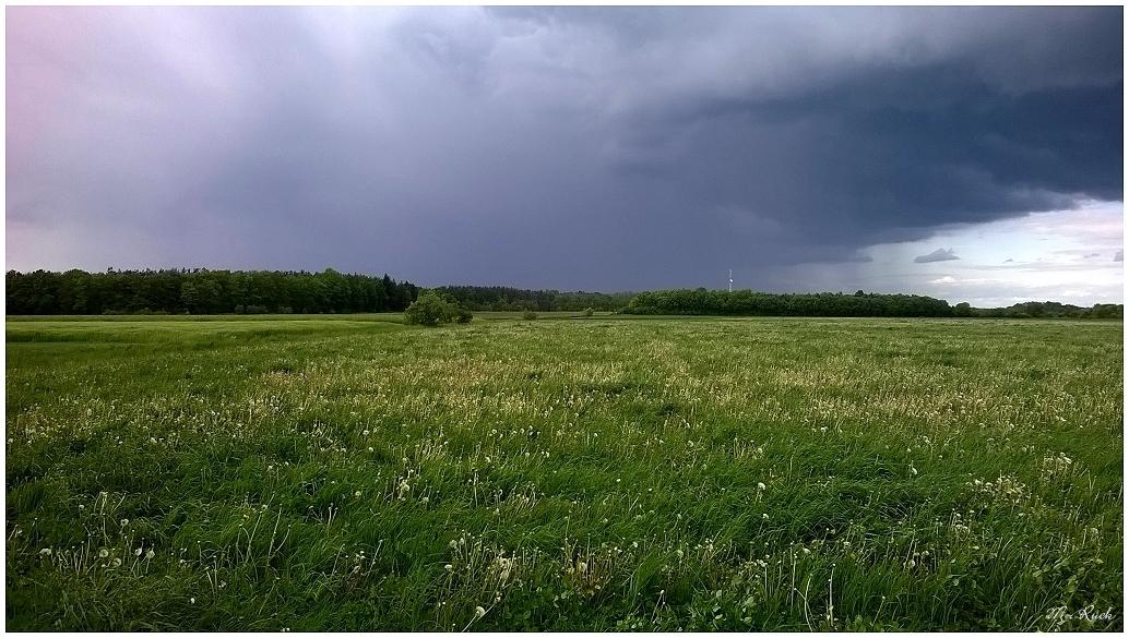 Wetter Ohio