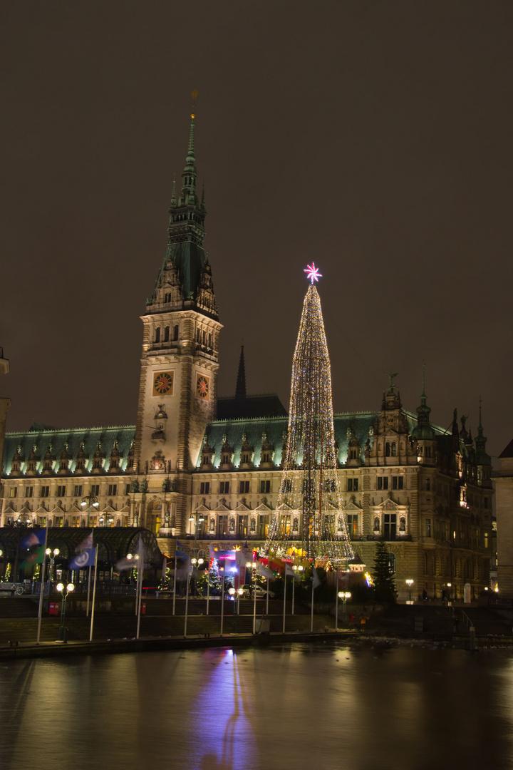 Hamburg Tannenbaum.Oh Tannenbaum Foto Bild Deutschland Europe Hamburg Bilder