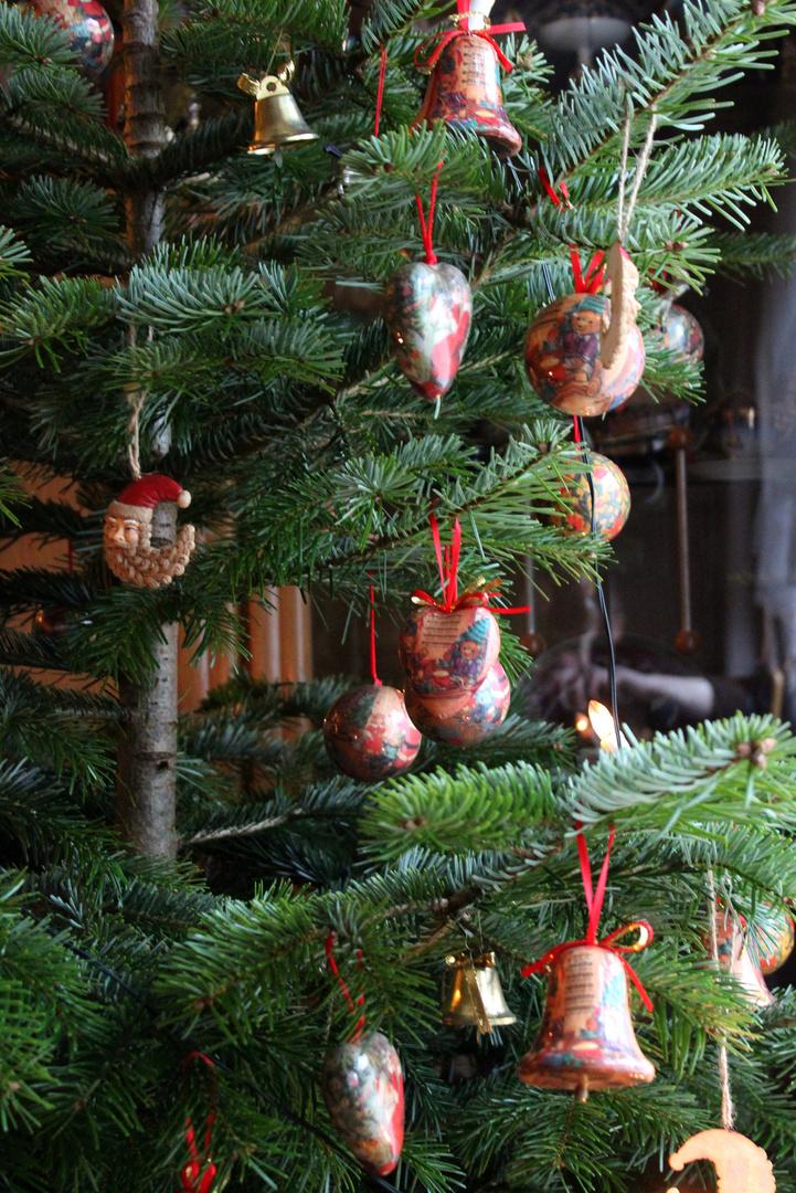 Tannenbaum Bilder.Oh Tannenbaum Foto Bild Weihnachten Spezial Bäume Bilder