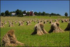 Ohio | Amish Country |