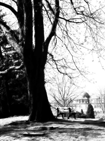 Ohlsdorfer Friedhof 2