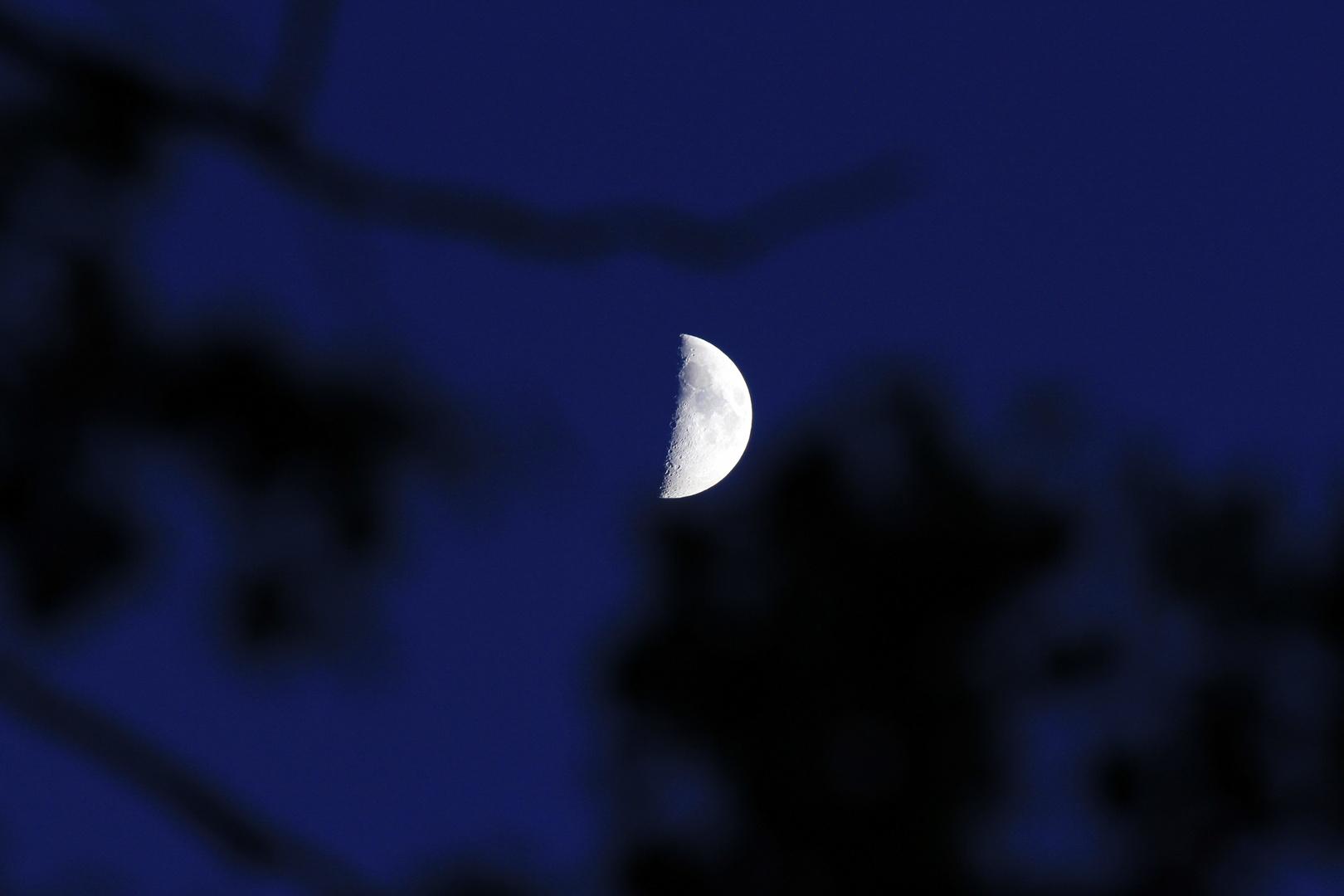 Ohne Titel - einfach nur der Mond :)