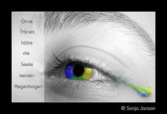 Ohne Tränen hätte die Seele keinen Regenbogen.