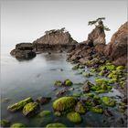 oita coastline