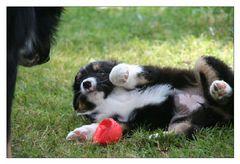 Ok ... es ist dein Ball