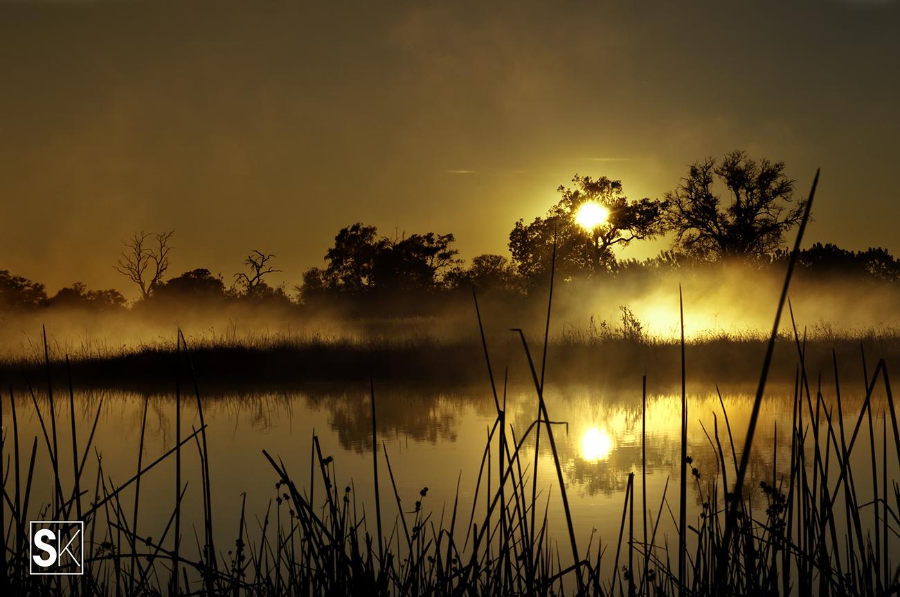Okawango Sunrise