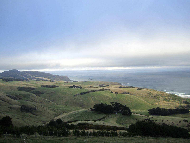 Okia Walk, Neuseeland