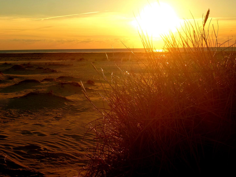 Oktober Abendsonne an der Nordsee