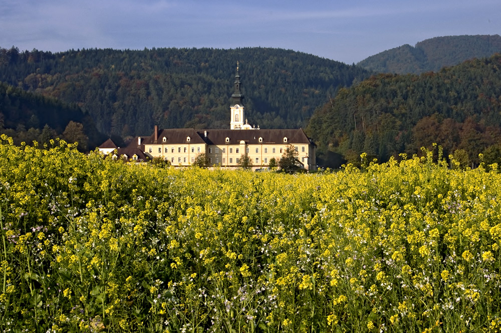 Oktoberblick auf Stift Rein bei Graz!