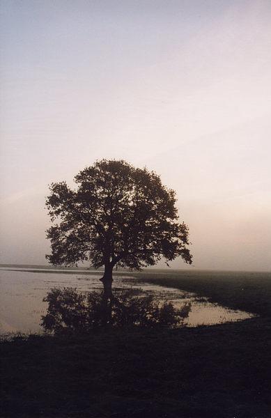 Oktobermorgen