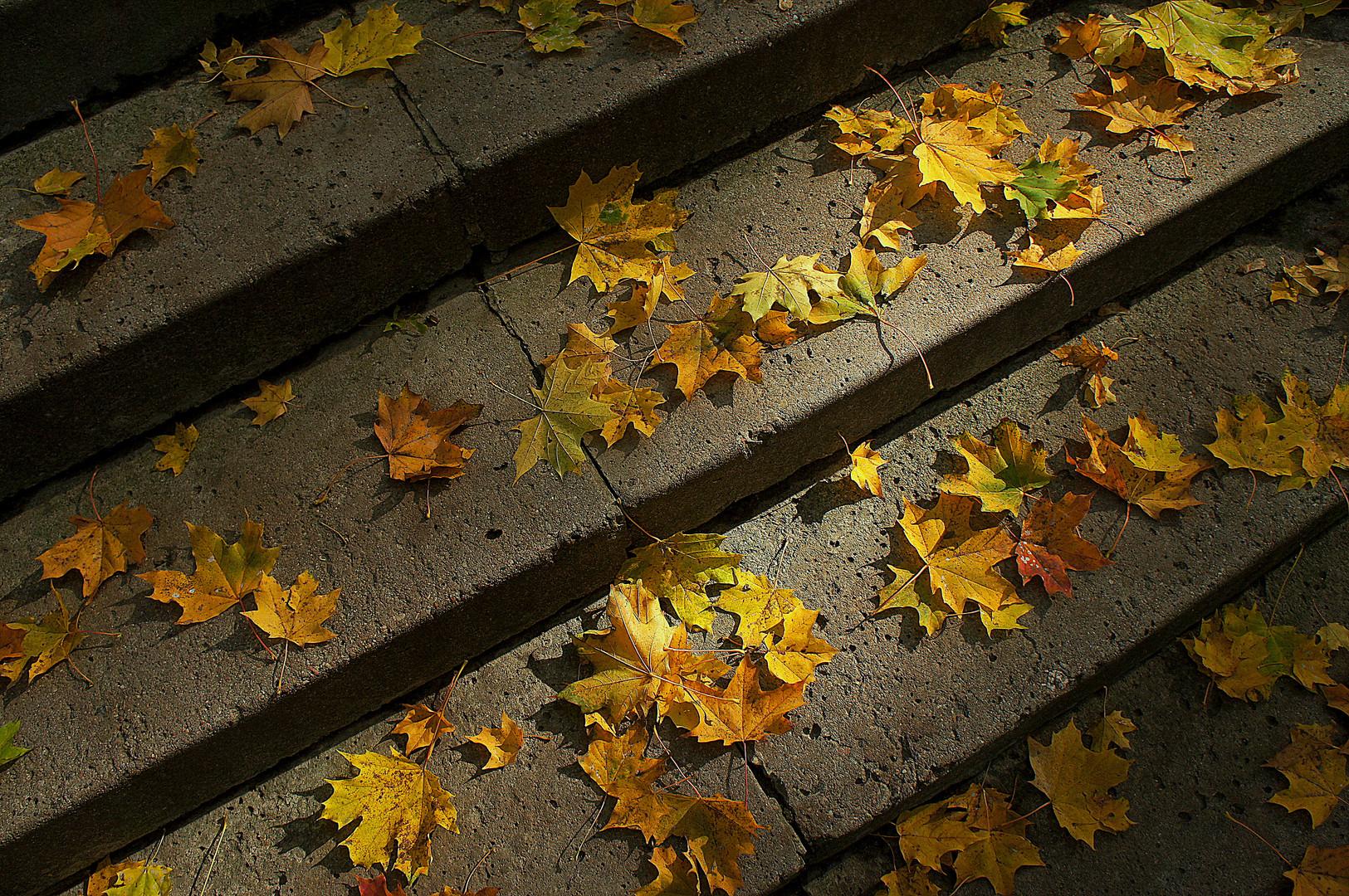 Oktober's gold
