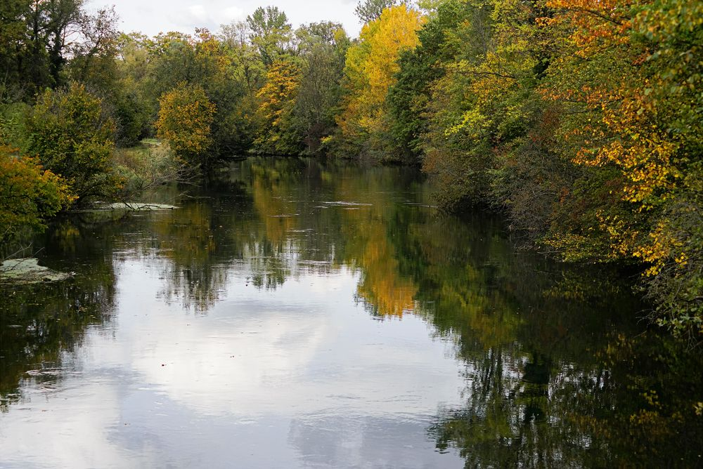 Oktoberwald am Kanal