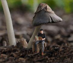 Olaf denkt auch nur an Pilze