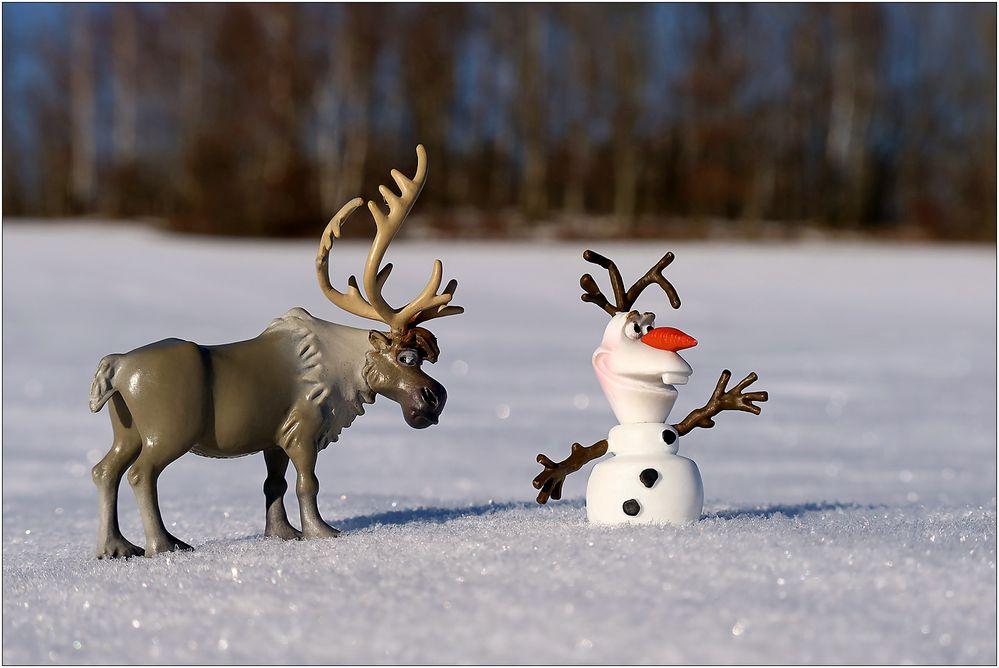 Olaf und Sven unterwegs...