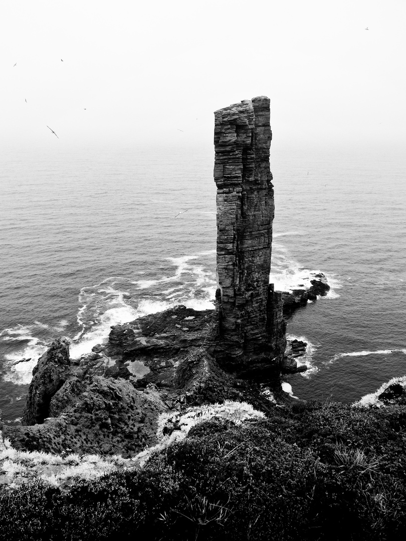 """old man of Hoy"""