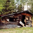 old shack