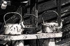 Old Tea pods