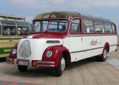 Oldtimer Bus ( 3 )