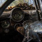 Oldtimerfriedhof - Buick Eight unter Spinnweben