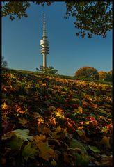 Olympiapark im Herbstlicht