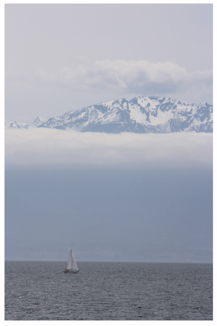 Olympic Mountains as seen from Vancouver Island