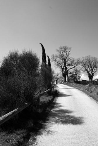 Ombres en chemin
