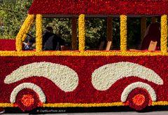 Omnibus aus Dahlien Winzerumzug Sasbachwalden
