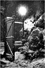 On a Snowy Evening in Central Park - No. 1