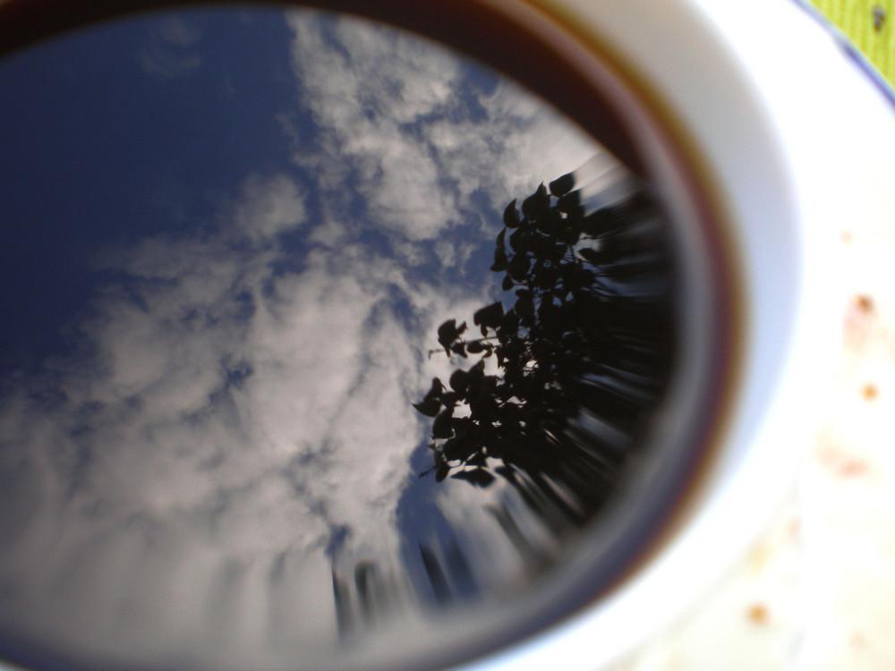 On peut lire dans une tasse de café.