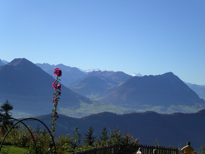 On Rigi Mountain