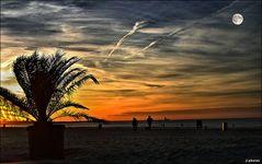 - On The Beach -