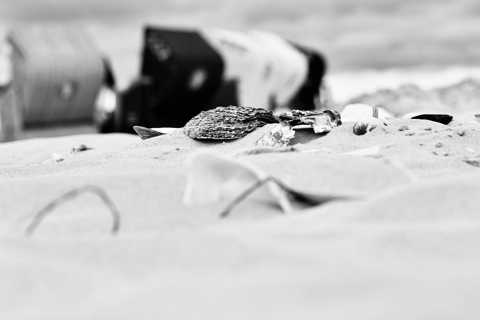 ….on the beach